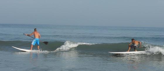 SUP/Paddle surf waves course/lessons in  Estepona, Marbella, Sotogrande, Algeciras