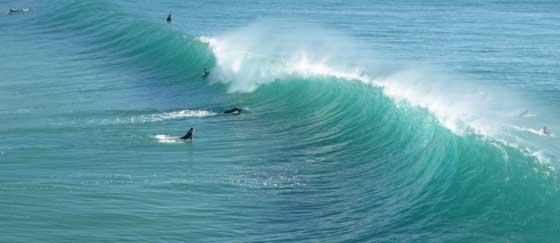Surf lesson in Marbella, Estepona, Algeciras, Sotogrande
